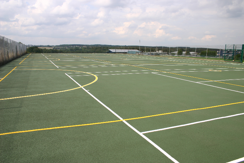 Dark green multi-lined court