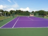 Purple / Evergreen Court