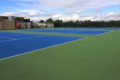 Dark Blue / Evergreen Courts
