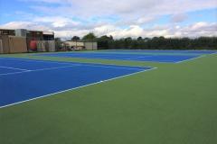 Dark Blue / Evergreen Courts
