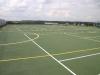 Dark green multi-lined court